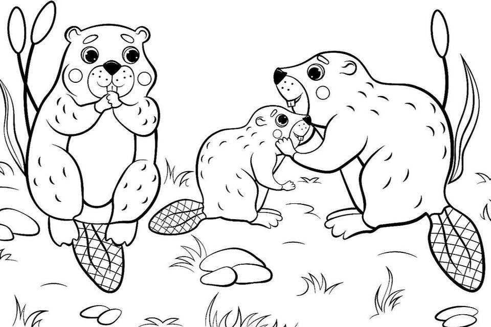 Animal Families Coloring Pages: Free & Fun Printable Coloring Pages Of  Animal Families For Everyone Printables 30Seconds Mom