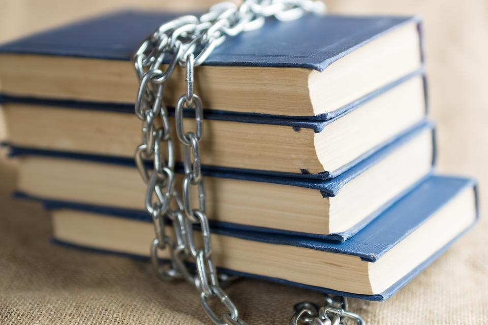 "Banned Books Week: The Top 10 ""Offenders"" & Why We Need These Books!"
