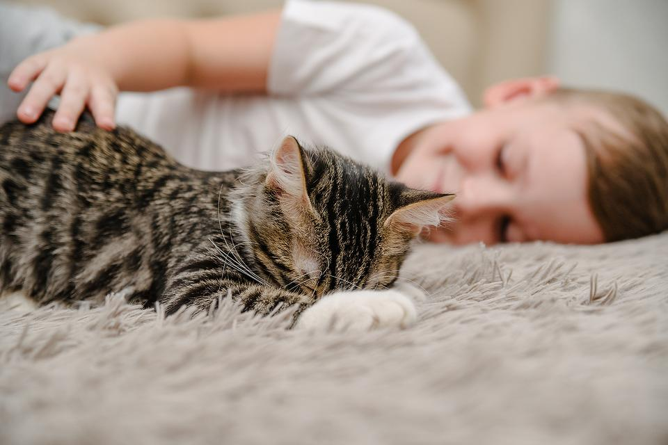 Helping Kids With Autism Develop Empathy: Cats May Help Increase Empathy & Decrease Anxiety in Autistic Kids