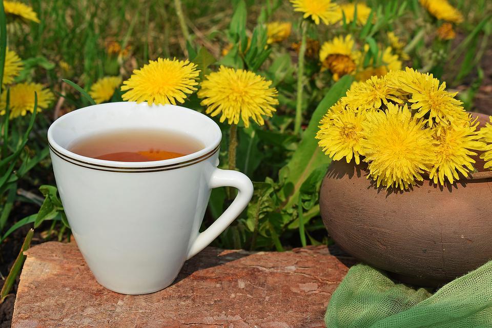 Dandelion Tea Recipe: Steep Your Way to a Healthier You With This Easy Dandelion Tea Recipe