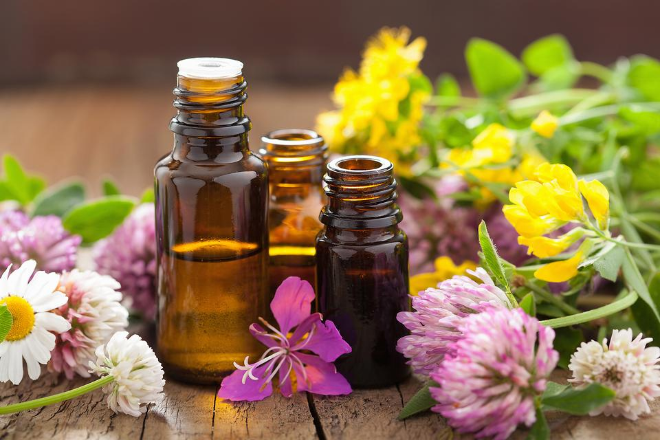 Essential Oils for Health & Wellness: 3 Oils Every Family Needs in Their Home!
