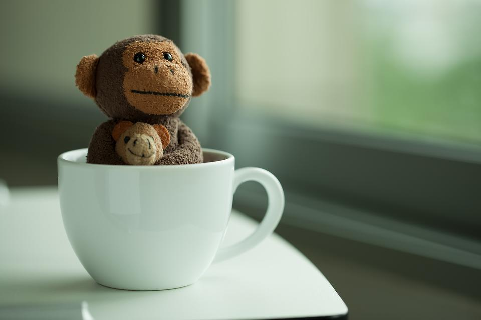 Even Monkeys Like Coffee: Here's Why Parents Need to Get Their Kids Outside to Play!