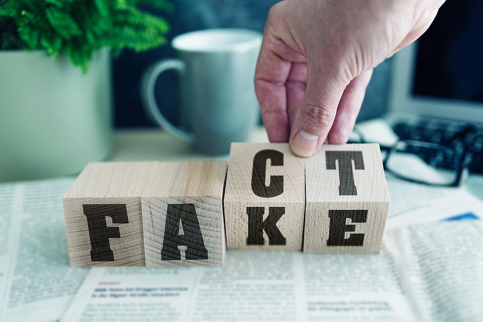 Fact or Fake? How to Help Kids & Adults Spot Misinformation Online
