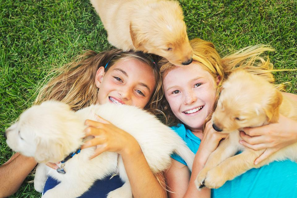 Family Pets: 7 Healthy Reasons You Should Consider a Furry Friend!