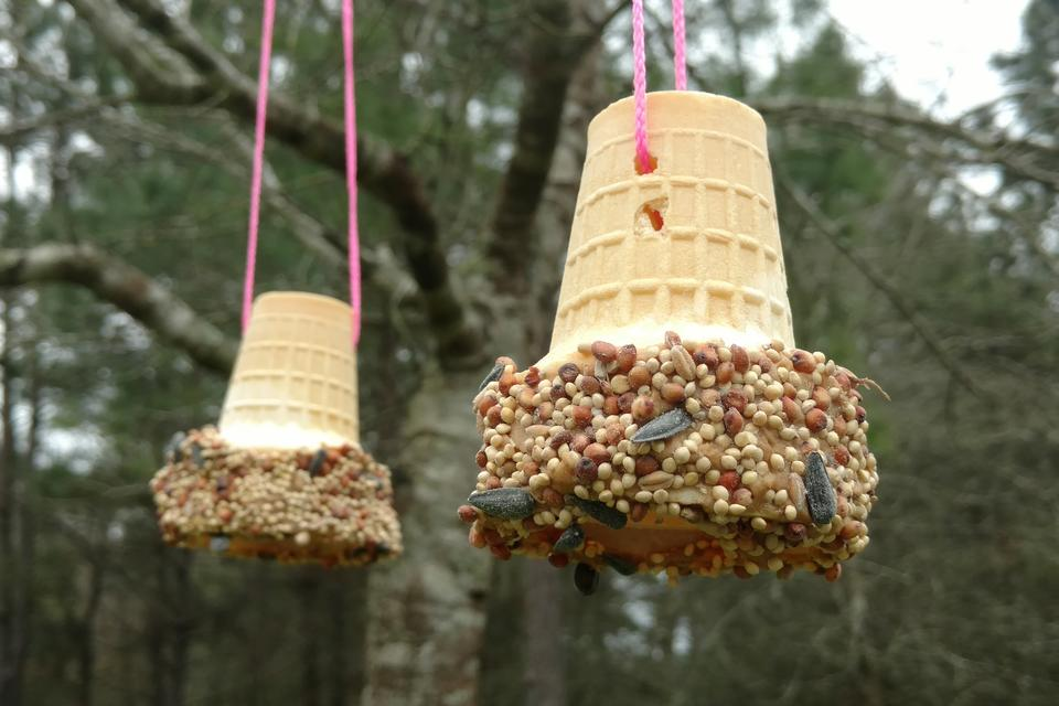 Crafts for Kids: How to ​Make DIY Ice Cream Cone Bird Feeders