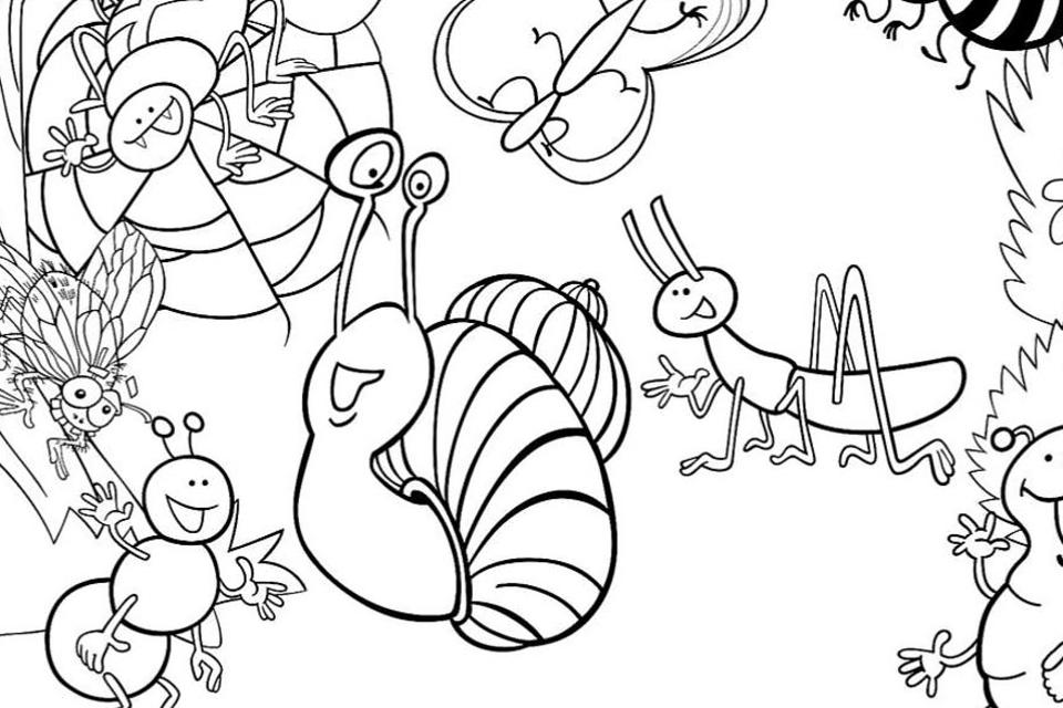Insect Coloring Pages: Free & Fun Printable Coloring Pages Of Bugs For Kids  Printables 30Seconds Mom