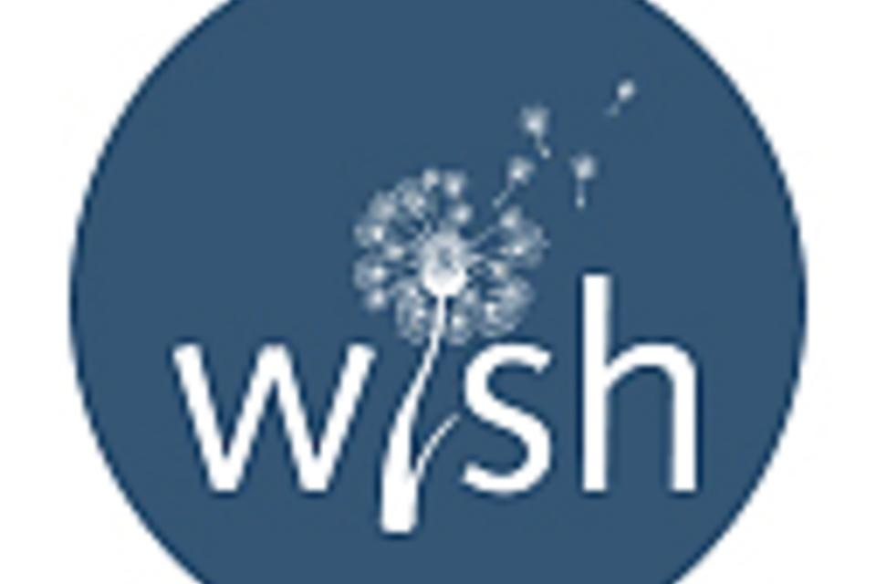 Introducing @WishRegistry, Premiere #Baby #Registry Experience! #WishBabyRegistry