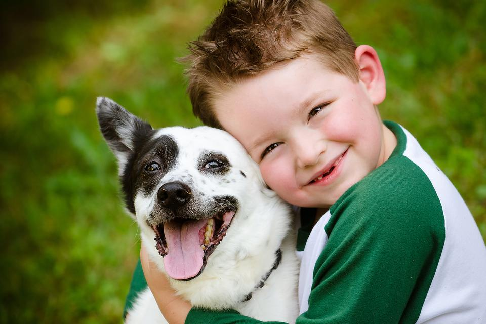 Kid Scared of Animals? 4 Tips to Help Your Child Feel Safe Around Furry Friends!