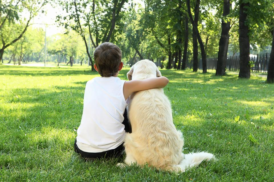 Kids Begging for a Dog? 5 Things You Need to Consider First!