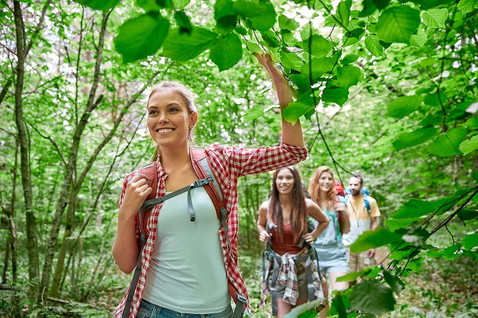 Love Hiking? 3 Poisonous Plants to Avoid on Your Family Hike!