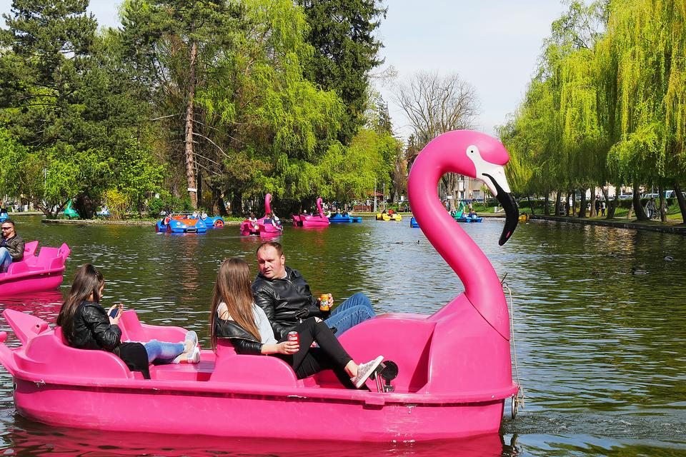Pedal Boats: Why Paddle Boating Is a Fun Way to Exercise With Kids!