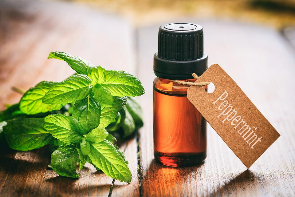 Peppermint Essential Oil: Try This Caffeine-free Afternoon Pick-Me-Up!