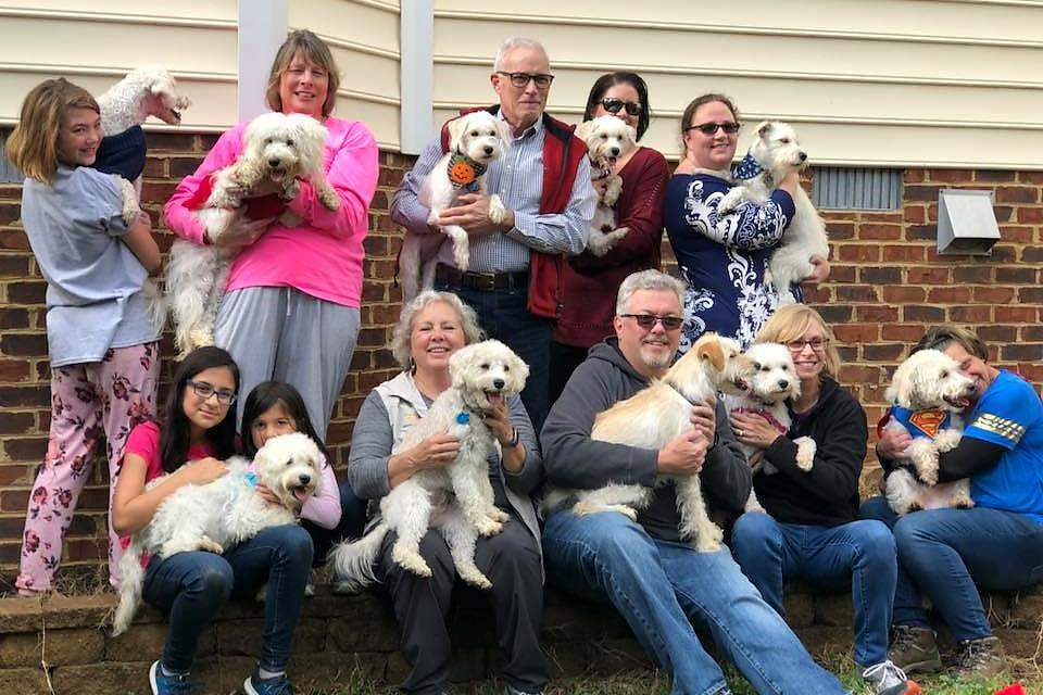 Puppy Palooza: Reuniting My Pups With Their 8 Siblings