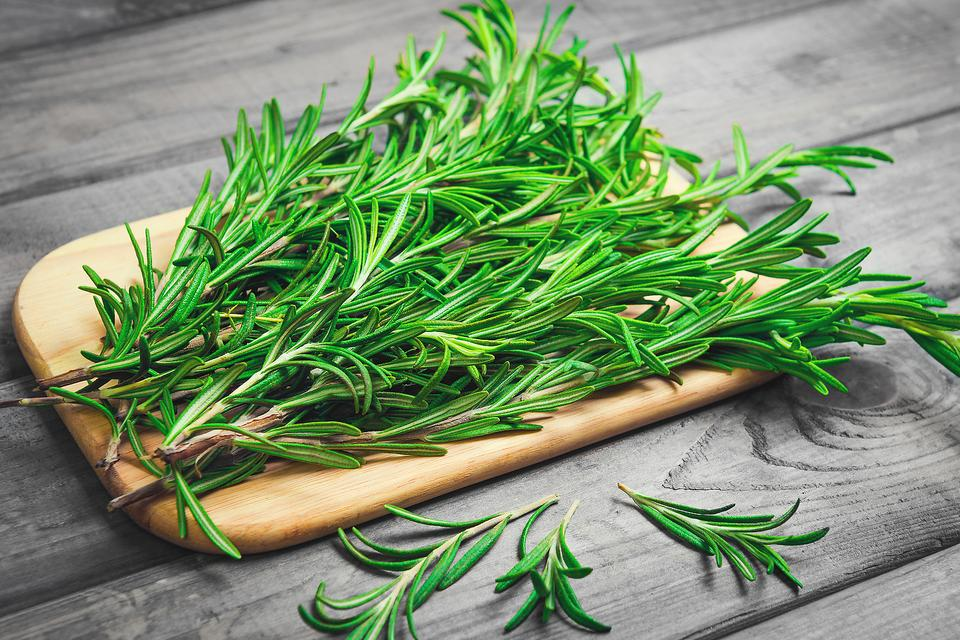 BBQ Rosemary: Here's Why This Herb Is My Fave for Cooking & More!