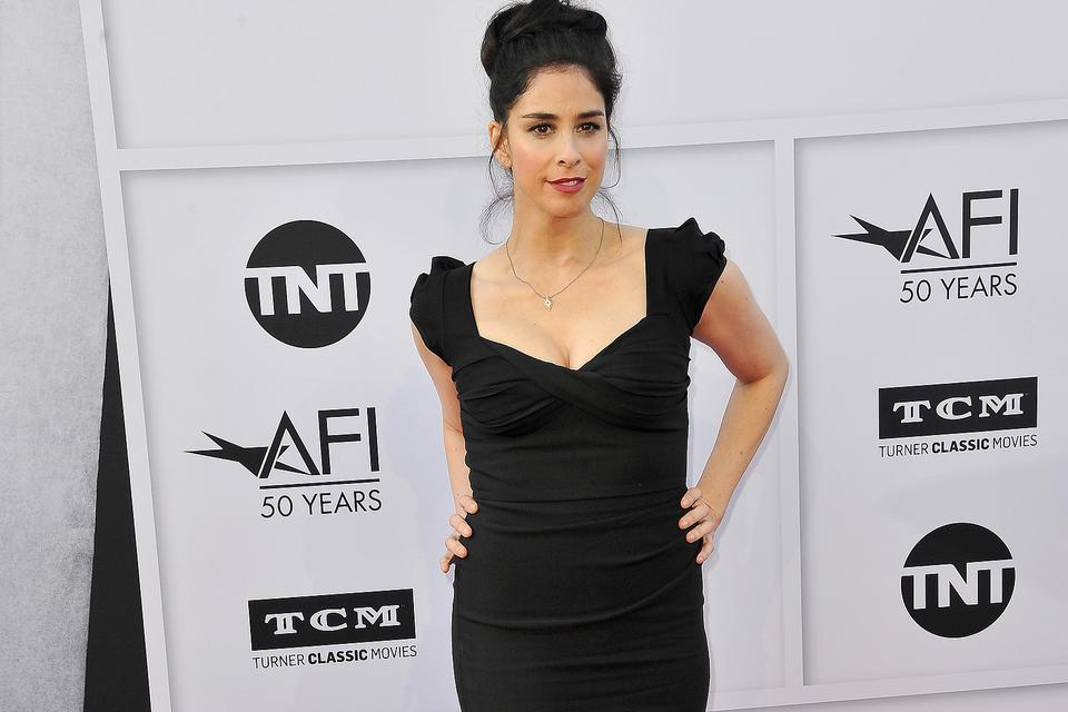 Sarah Silverman Uses Twitter to Change a Man's Life: Read the Amazing Story!