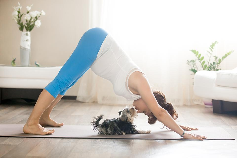 Simple Yoga Poses: How to Get Your Downward Dog On!