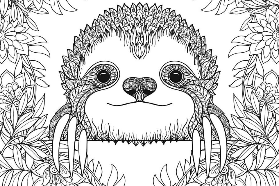 Sloth Coloring Pages: Free Printable Coloring Pages Of Sloths To Help You  Slow Down & Relax (Like A Sloth!) Printables 30Seconds Mom