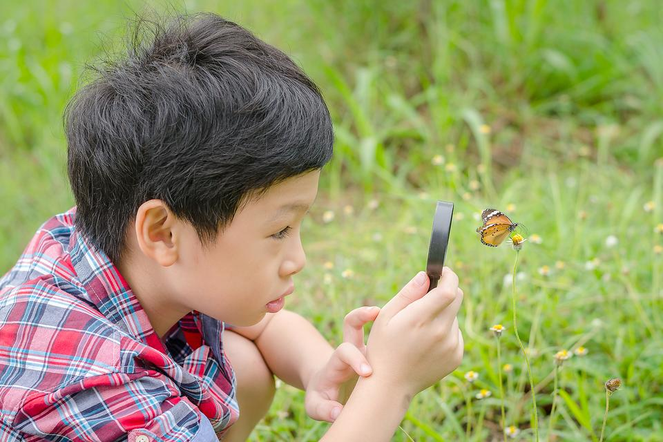 Science Projects: Spark Curiosity in Your Child With Citizen Science