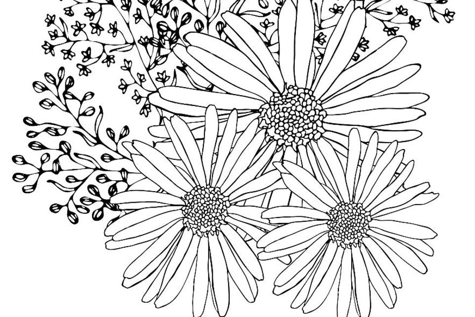 - Flowers Coloring Pages: 10 Free & Fun Printable Coloring Pages Of Flowers  Printables 30Seconds Mom