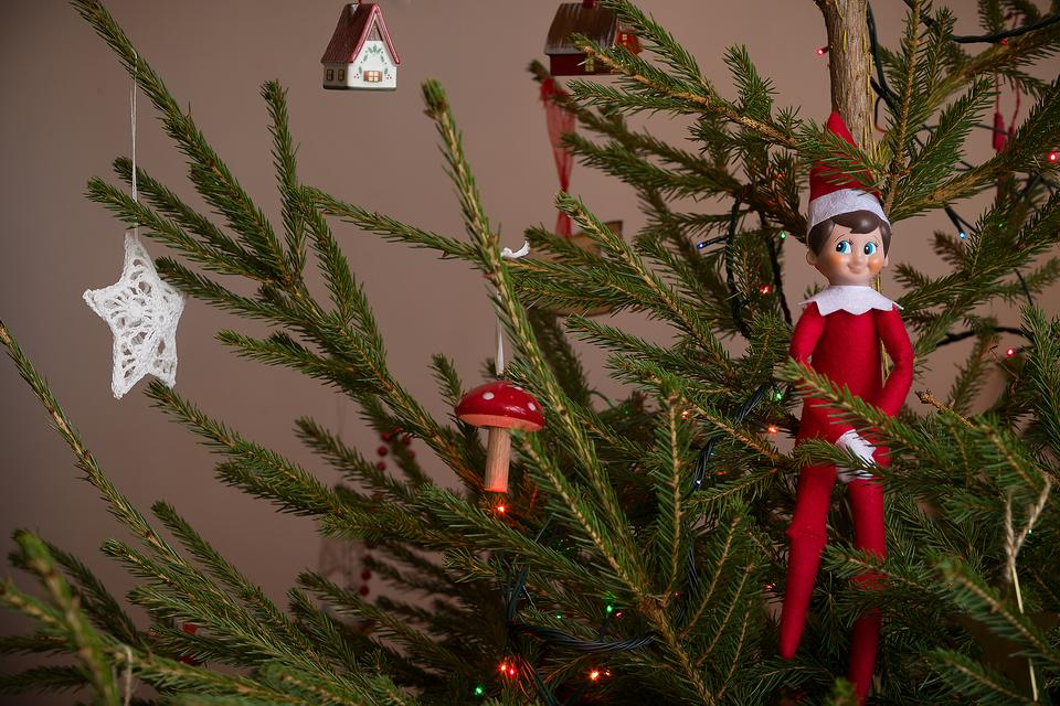 The Elf on the Shelf Ideas: 23 Ways to Pose Your Elf on the Shelf!