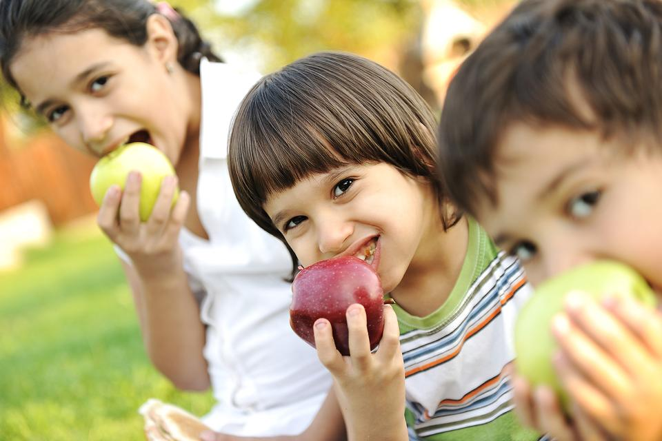 Want Your Picky Eater to Try New Foods? Here's An Often Overlooked Opportunity!