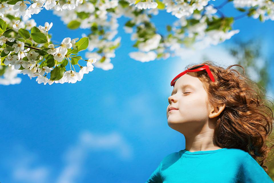Seasonal Allergies: 5 Ways to Beat the Late-Summer & Early Fall Allergy Season!
