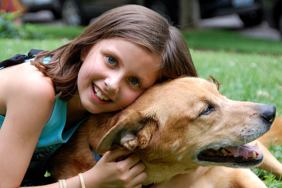 When a Family Pet Dies: How to Help Your Child Manage Their Grief