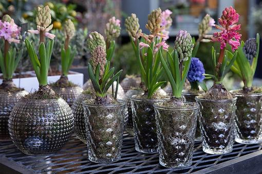 20 Creative DIY Planter Ideas: Recycle Items From the House Into Containers for Your Plants