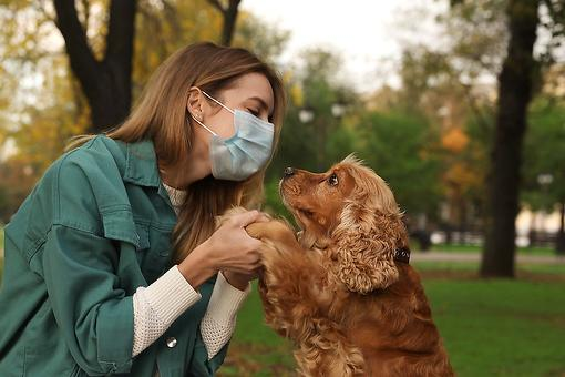 Can My Pet Catch COVID-19? What Pet Owners Need to Know About the Coronavirus, Dogs & Cats