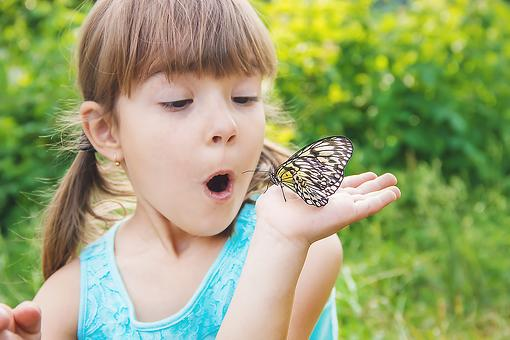 A Child Is Like a Butterfly: Why Kids Are Like Butterflies & Need to Fly (Even During a Pandemic)