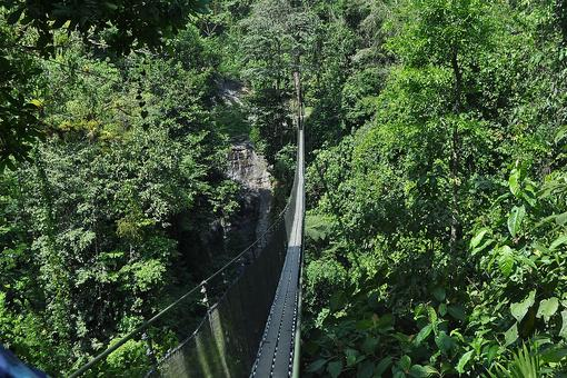 Costa Rica: Facing My Fears on a Shaky Bridge in Central America (Step Outside of Your Comfort Zone)!