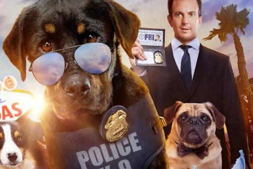 "Fair Warning, Parents: Kids' Movie ""Show Dogs"" Reveals Uncomfortable Theme"