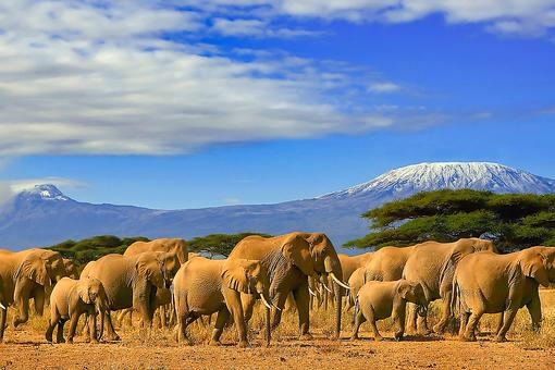 Find Your Strength: How to Climb Any Mountain – Even Kilimanjaro!