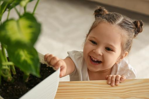 Go Green This Valentine's Day: 3 Benefits of Giving a Living Plant to Your Loved Ones (Kids, Too!)