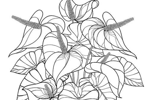 Houseplants Coloring Pages: Free Printable Coloring Pages of Plants for Plant Lovers