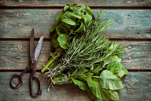 How to Store & Preserve Your Fresh Summer Herbs!
