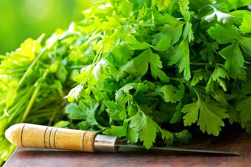 How to Store Fresh Herbs & Lettuce: This Trick Will Extend Their Shelf Life!