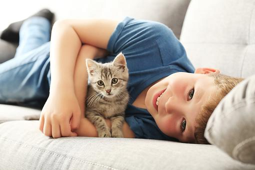American Red Cross Announces New Cat & Dog First Aid Online Course