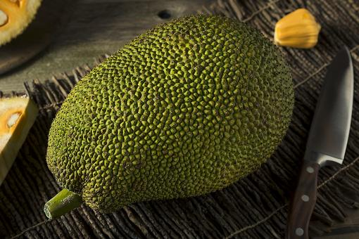Jackfruit: The 100-Pound Fruit That's Worth the Heavy Lifting!