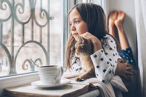 A Mindful Place for Kids: Why Parents Should Have a Quiet Area in Their Home for Children