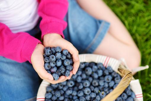 Life Is a Bowl of Berries: Why You Need to Pick Some With Your Kids!