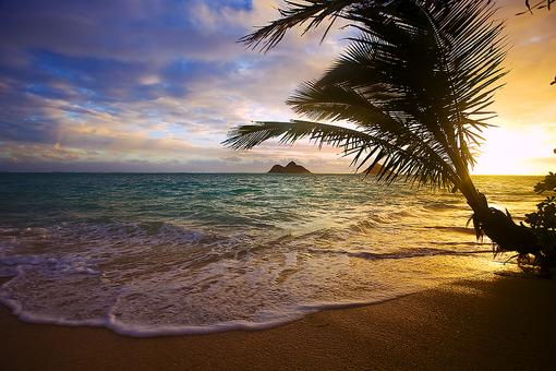 Meditate in Hawaii: Stop, Breathe & Watch This Meditation Video (You Deserve It)!