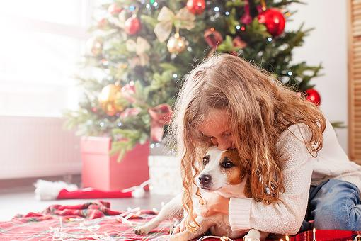 On the Fence About Getting Your Kids a Dog for Christmas? Think About This...