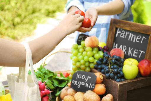 Organic Vs. Conventional Farming: The Power of Organic, Plant-based Ingredients