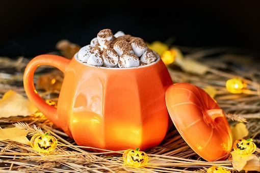 Pumpkin Pie Spice Hot Chocolate Recipe: You Need to Sip on This Creamy Pumpkin Hot Chocolate Recipe ASAP