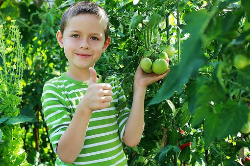 Summer Vegetable Garden: A Great Way to Get Kids to Eat More Veggies!