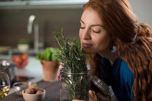 Spring Herb Gardens: How to Grow & Dry Your Own Fresh Herbs