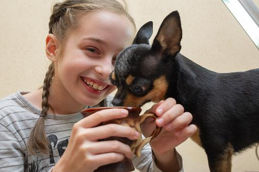 Kids Fostering Animals: How a Charm Bracelet Adds Joy When It's Time to Say Goodbye
