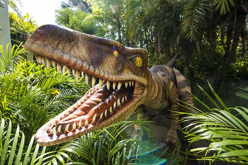 Visit Orlando: 11 Little-Known & Unusual Orlando Theme Park Experiences