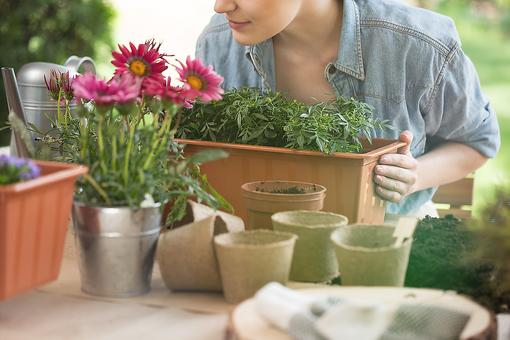 23 Garden & Plant-care Products All Homeowners Need (and Some to Add to Your Wish List!)